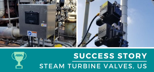 Steam Turbine Valves Upgrade